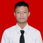 Profile picture of Roni Hadinata